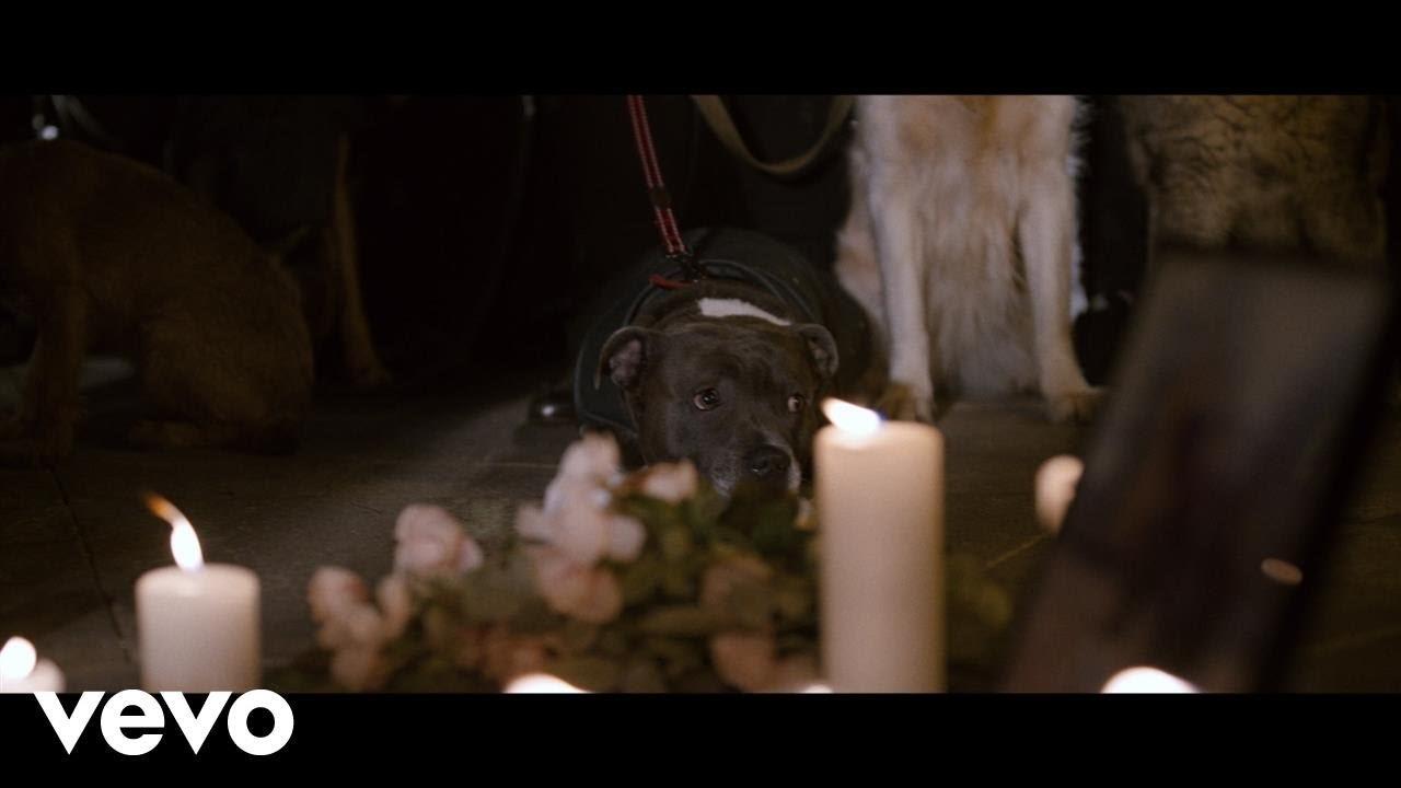 Tom Chaplin - Midnight Mass (Official Video)
